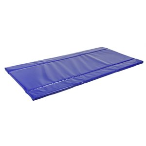 Disinfection mat 180 cm x 90 cm x 3.5 cm