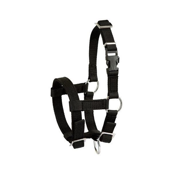 Adjustable nylon halter for alpaga