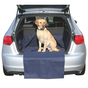 Protective Rug for hatch back car