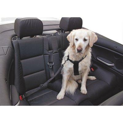 Sangle de sécurité pour chien 50 - 70 cm**