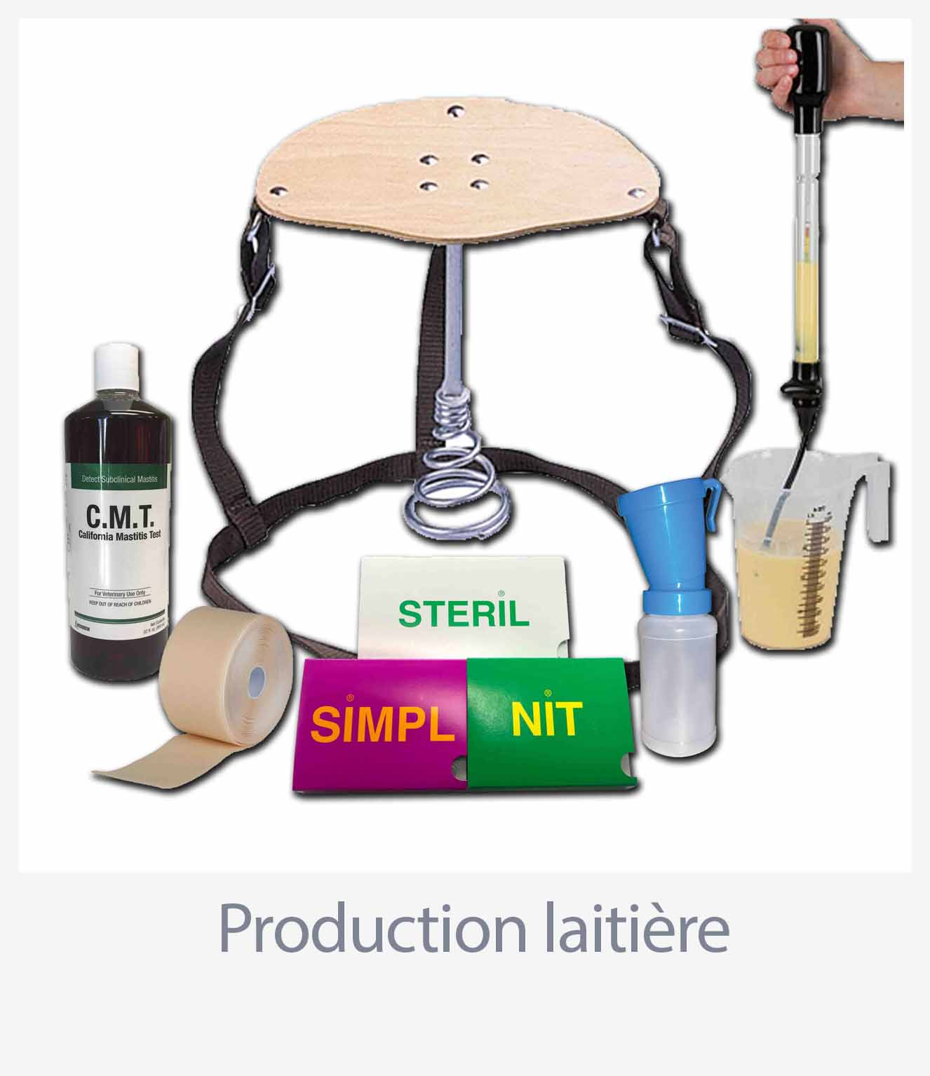 Production laitière