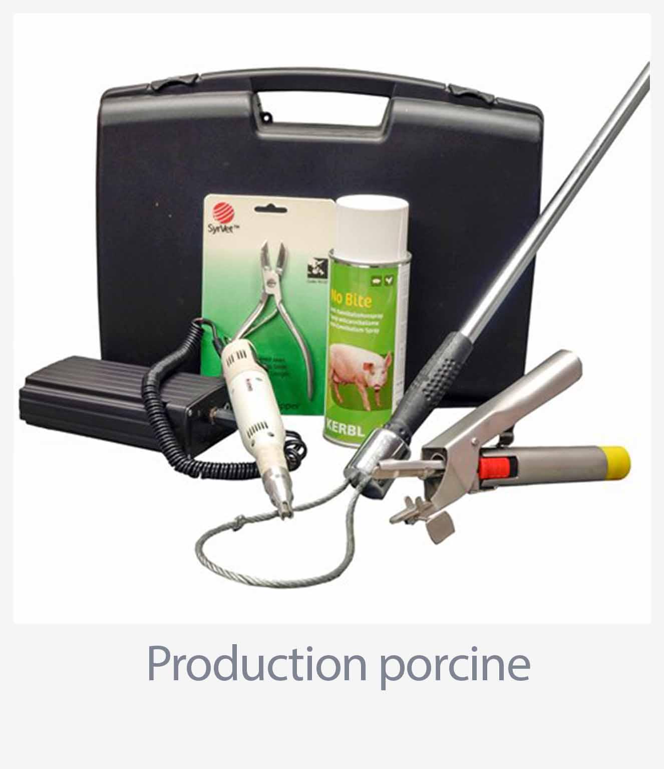 Production porcine