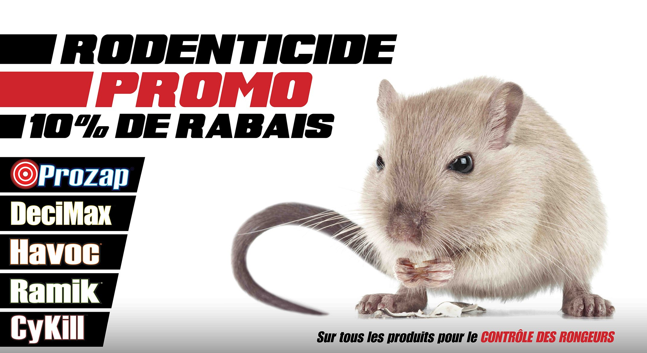 Placement Rodenticide 2020